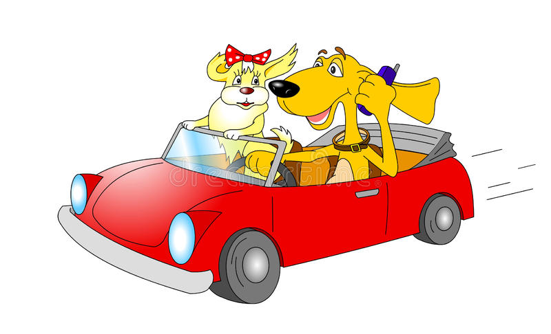 Cartoon dogs in car. Two cartoon dogs driving motor car, driver with mobile telephone, isolated on white background royalty free illustration