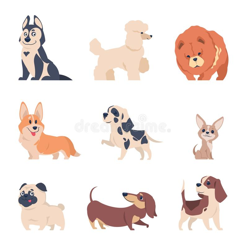 Cartoon dogs. Retriever labrador husky puppies, flat happy pets set, isolated home animals on white background. Vector royalty free illustration