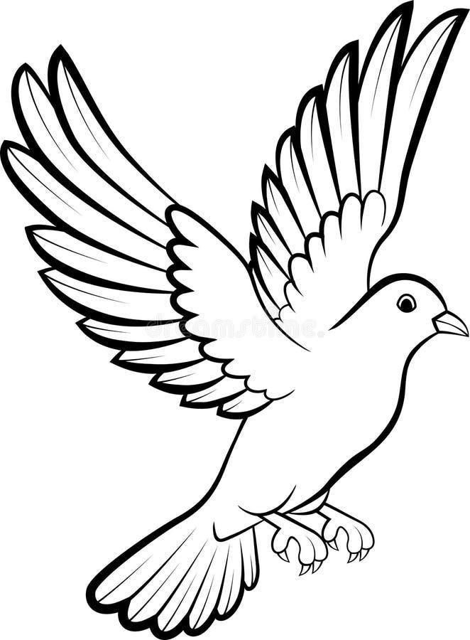 Dove bird outline