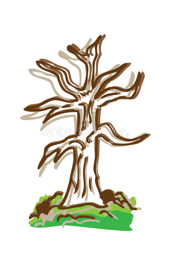Cartoon Drawing Tree With Color Royalty Free Stock Photography