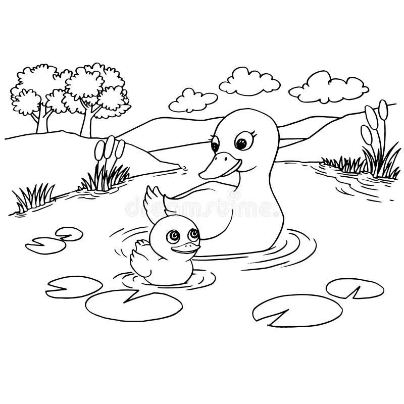 Cartoon Duck Lake Coloring Page Vector Stock Vector - Illustration ...