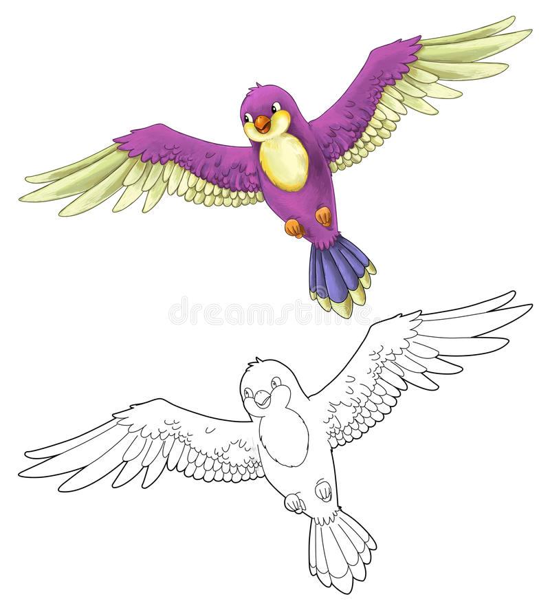 Cartoon Exotic Colorful Bird - Flying - Isolated - With Coloring ...