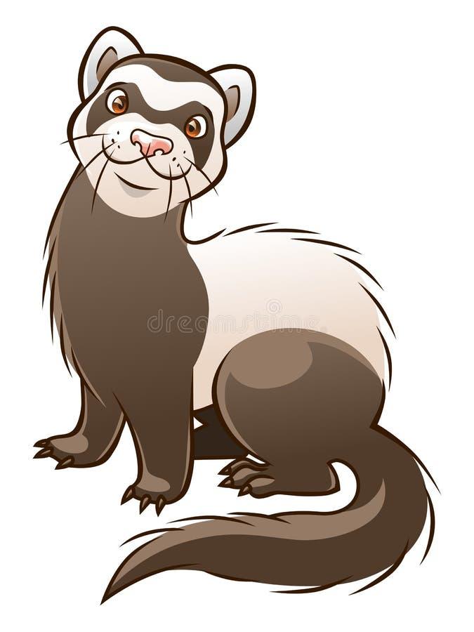 Cartoon ferret stock vector illustration of domestic