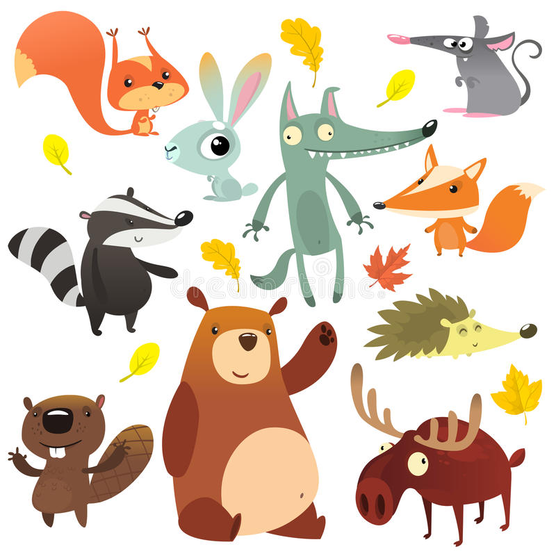 Cartoon forest animal characters. Wild cartoon animals collections vector. Squirrel, mouse, badger, wolf, fox, beaver, bear stock images