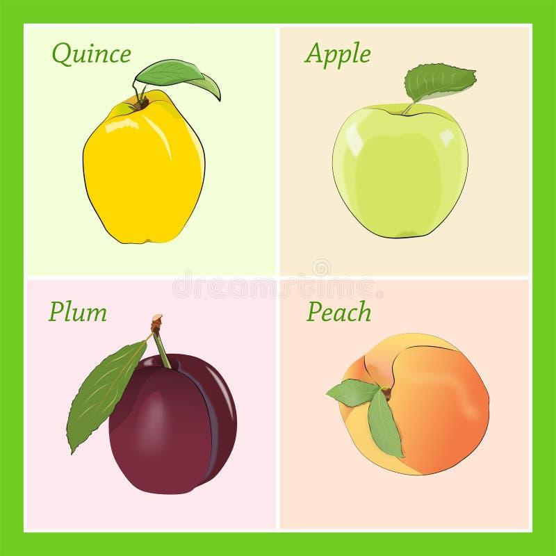 Cartoon fruits royalty free illustration