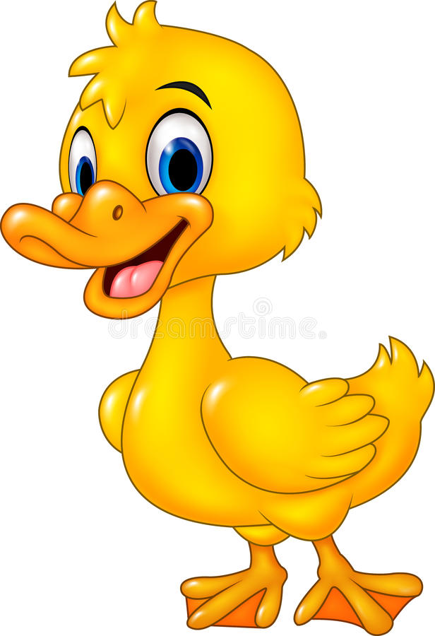 Cartoon funny baby duck posing isolated on white background royalty free illustration