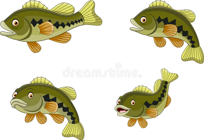 Cartoon funny bass fish collection. Illustration of Cartoon funny bass fish collection vector illustration
