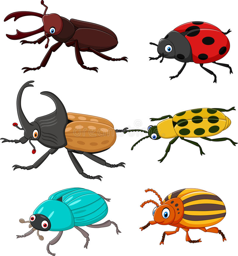 Cartoon funny beetle collection royalty free illustration