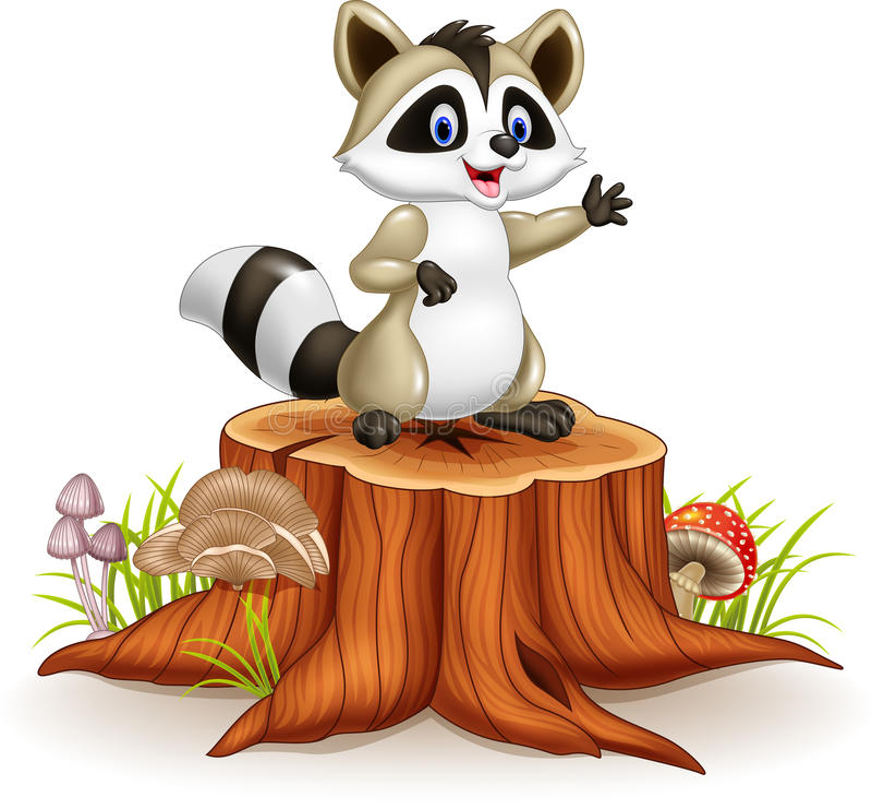Cartoon funny raccoon cartoon waving hand on tree stump royalty free illustration