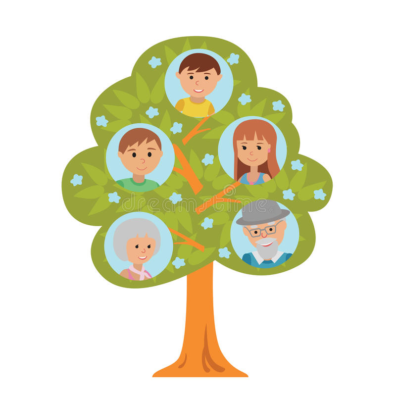 Cartoon generation family tree in flat style grandparents parents and child on white background. Cartoon generation family tree illustaration on white vector illustration