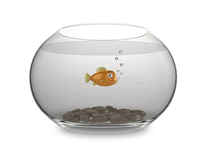 Cartoon Goldfish Stock Images