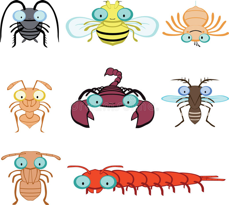 Download Cartoon Graphic Insects And Arthropod Stock Vector - Image: 32363779
