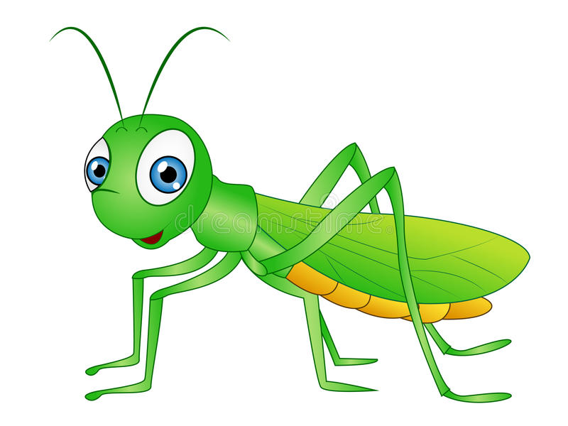 Aninimal Book: Cartoon Grasshopper Clip Art Stock Illustration ...