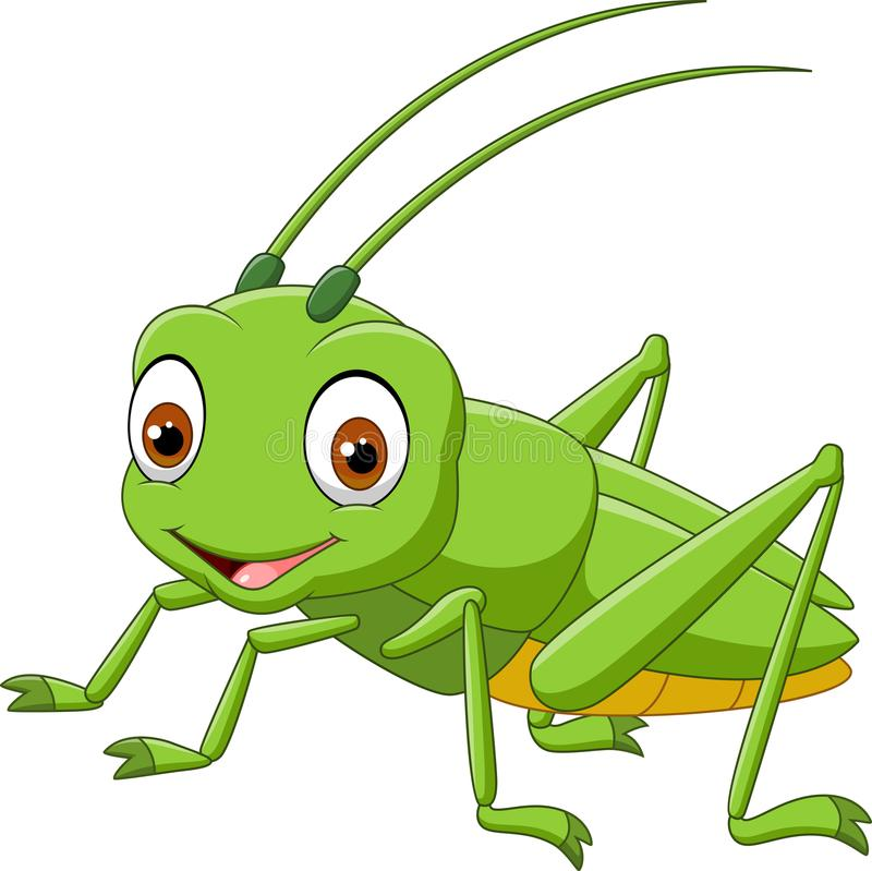 Aninimal Book: Cartoon Grasshopper Isolated On White Background Stock ...