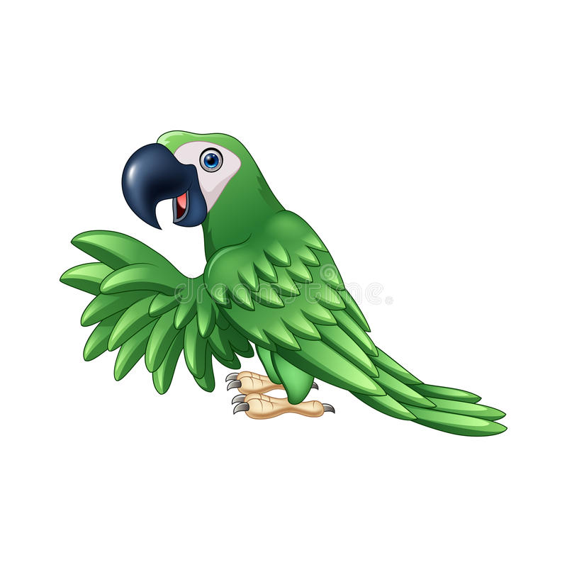 Cartoon green parrot stock illustration