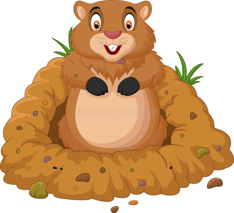 Cartoon groundhog looking out of hole vector illustration