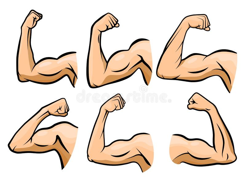Cartoon hand muscle. Strong arm, boxer arms muscles and strength hands hard gym vector illustration set vector illustration