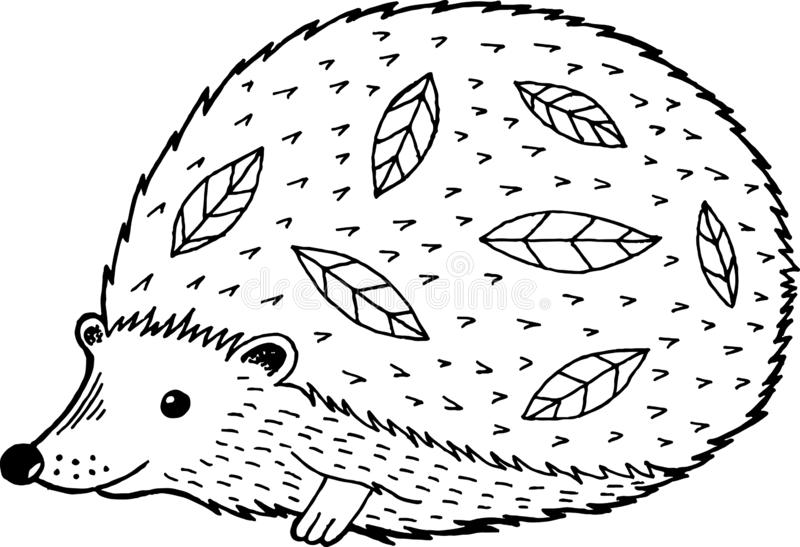 Cartoon hedgehog - coloring page for adults and kids. Vector ill. Ustration stock illustration
