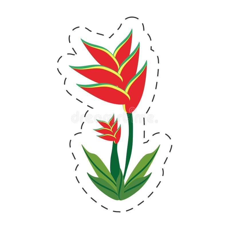 cartoon heliconia flower image royalty free illustration
