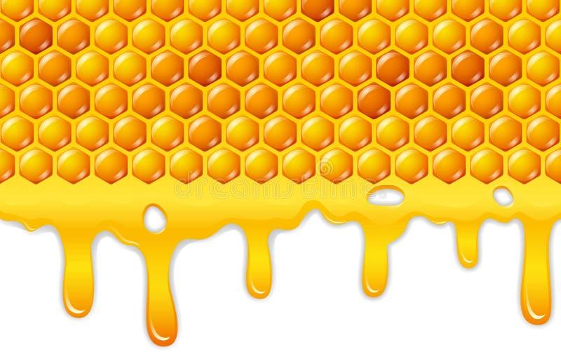 Cartoon honeycomb with honey dripping. Illustration of Cartoon honeycomb with honey dripping royalty free illustration