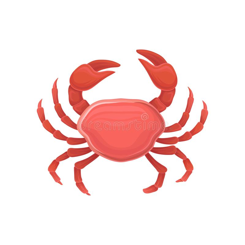 Cartoon icon with red crab. Healthy eating. Marine product. Design for restaurant menu, logo, promo poster, flyer or royalty free illustration