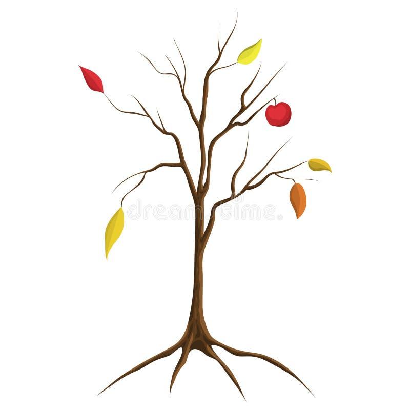 Cartoon illustration of bare apple tree isolated on white background. tree no leaves isolated. flat cartoon style. Autumn fall royalty free illustration