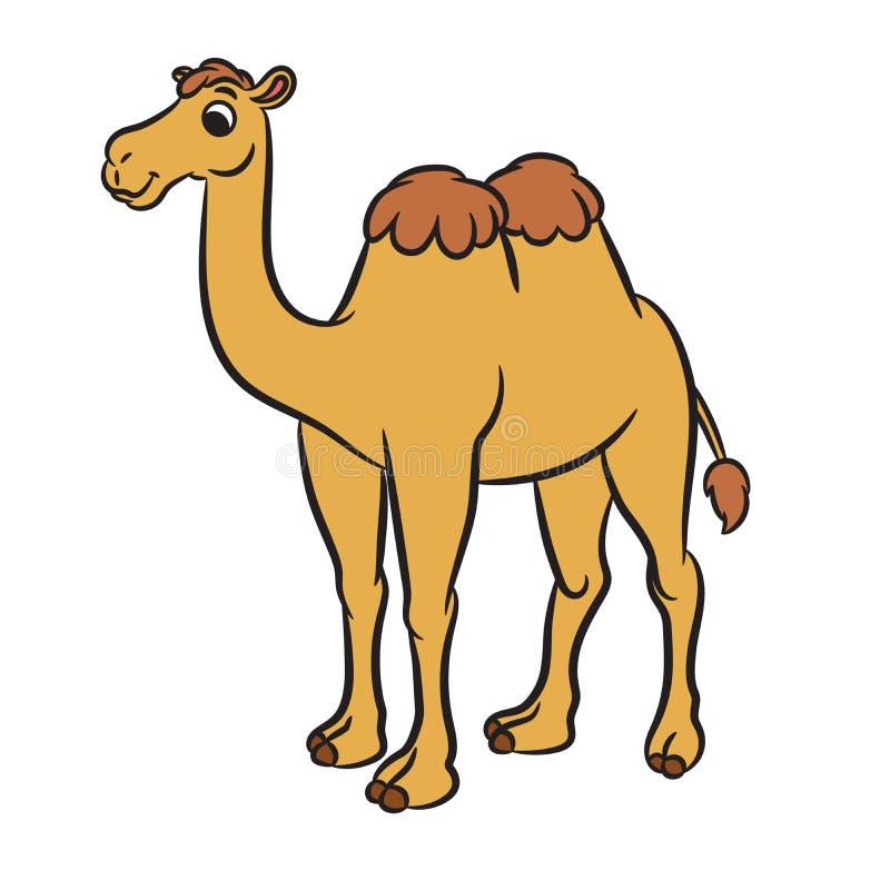 Cartoon illustration of cute camel stock illustration