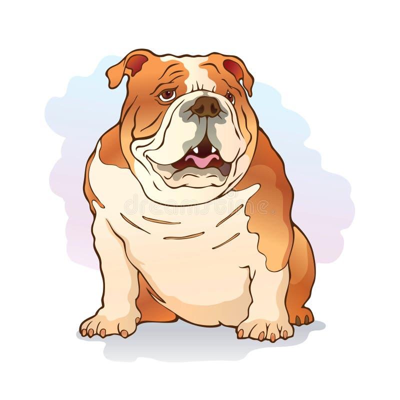 Illustration of english bulldog stock images