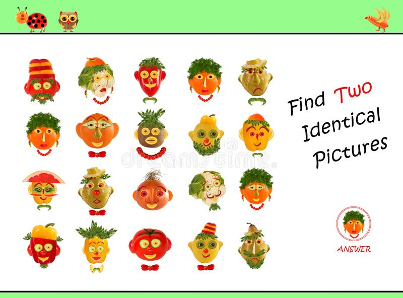 Cartoon  Illustration of Finding the Same Picture.  Educational Game for Preschool Children royalty free stock images