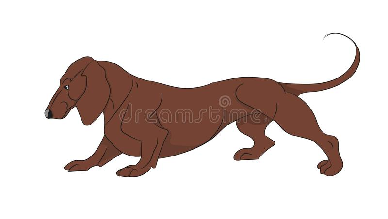 Cartoon dachshund vector. Cartoon image of cheerful dachshund royalty free illustration