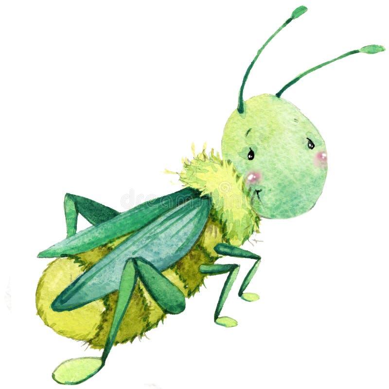 Cartoon insect grasshopper watercolor illustration. vector illustration