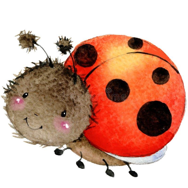 Cartoon insect ladybug watercolor illustration. stock illustration