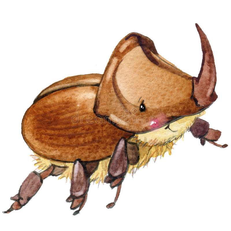 Cartoon insect rhinoceros beetle watercolor illustration. stock illustration