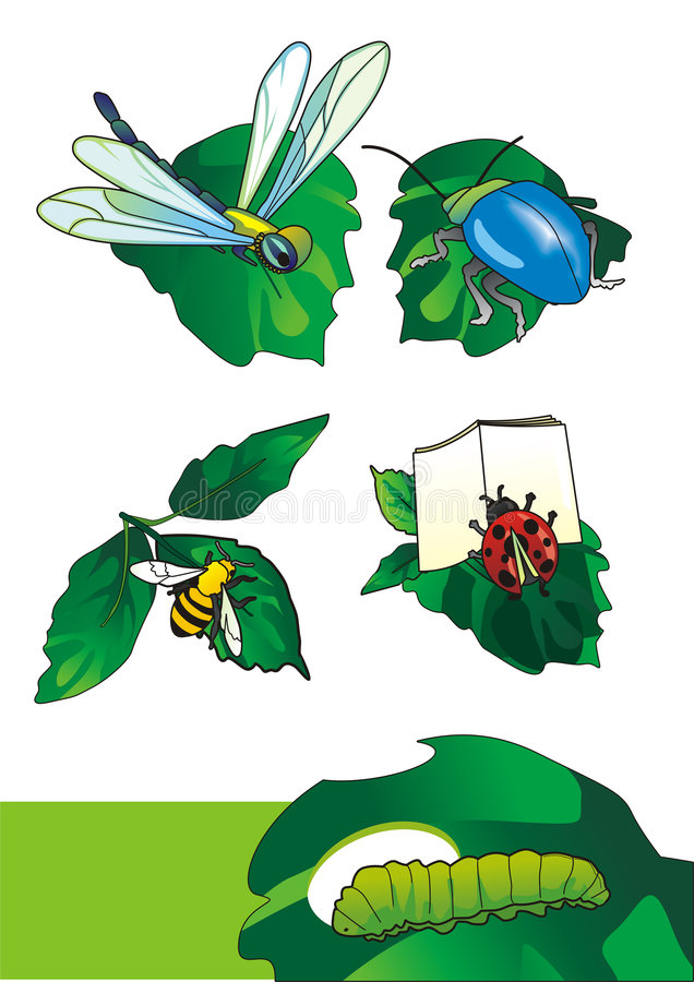 Cartoon insects. EPS Vector illustration of a insects (it can be used as an illustration for the children's book royalty free illustration