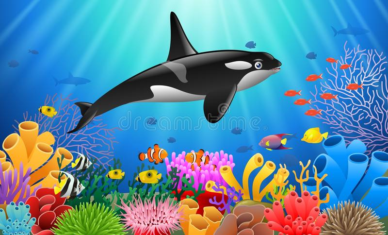 Cartoon killer whale. With Coral Reef Underwater in Ocean royalty free illustration