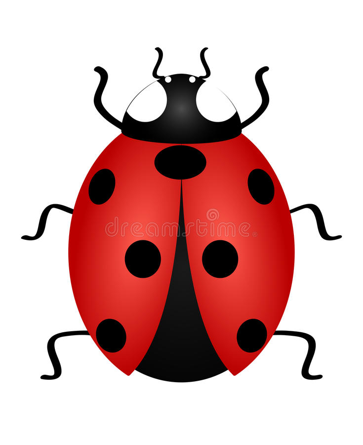 cartoon ladybug clip art stock vector illustration of beetle 84658064 rh dreamstime com beetle clipart free vw beetle clipart