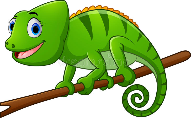 Cartoon lizard on branch vector illustration