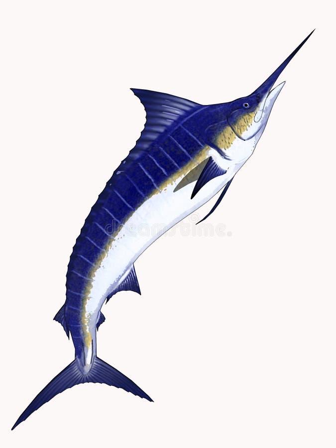 Cartoon Marlin royalty free stock photo