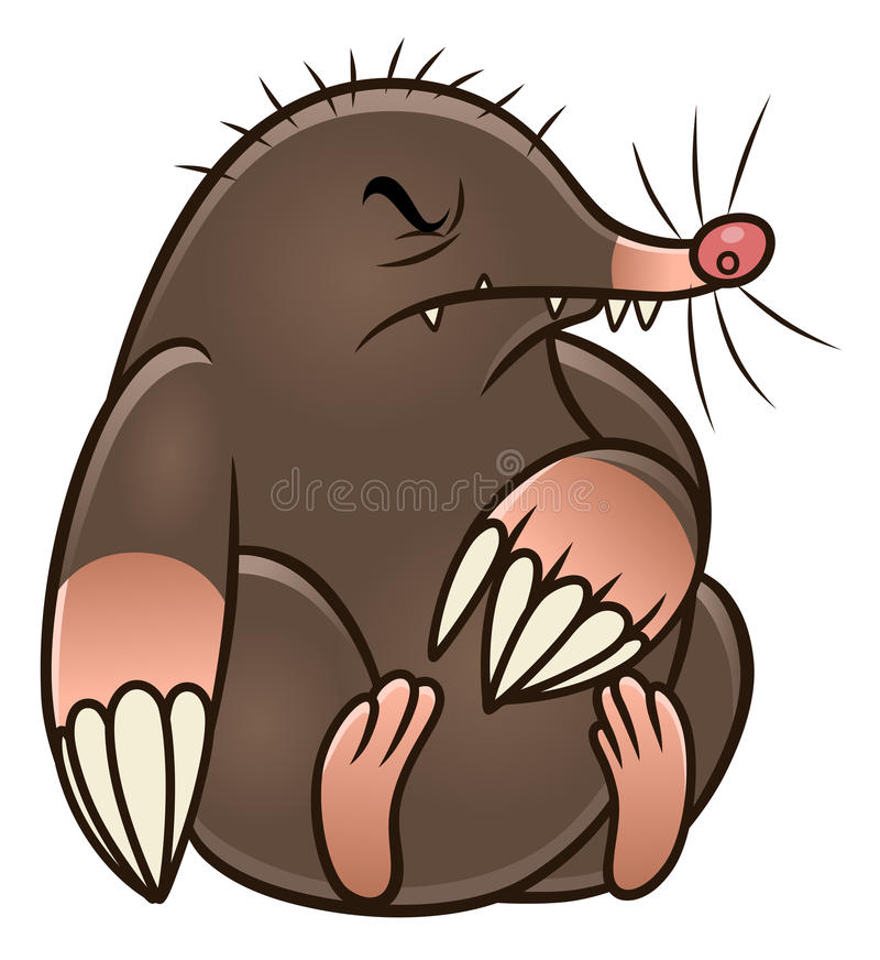 cartoon mole pest stock vector illustration of isolated 97935598 rh dreamstime com cartoon mole images cartoon mole pictures animal