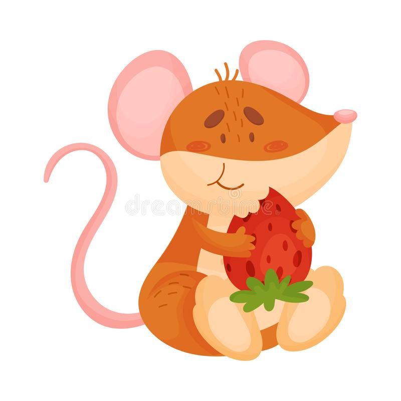 Cute Mouse Eating Strawberry Stock Illustration Illustration Of Hand Funny 74224048