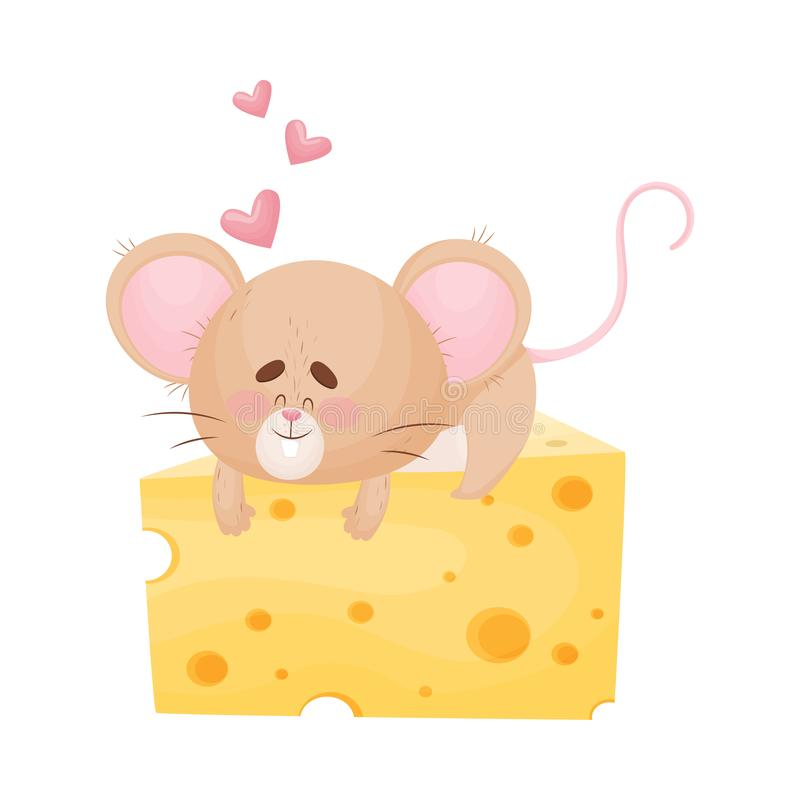 Cartoon mouse lies on a huge piece of cheese. Vector illustration. Cute humanized mouse lies and hugs a huge piece of cheese. Hearts fly around. Vector vector illustration