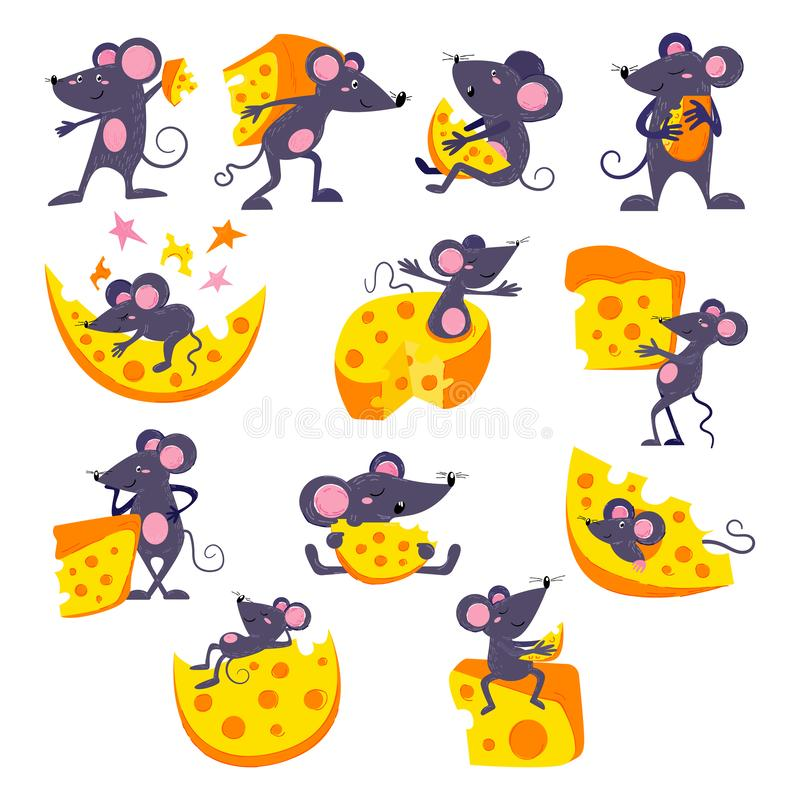Cartoon mouse vector mousy animal character rodent and funny rat with cheese eating cheesy food illustration mousey set stock illustration