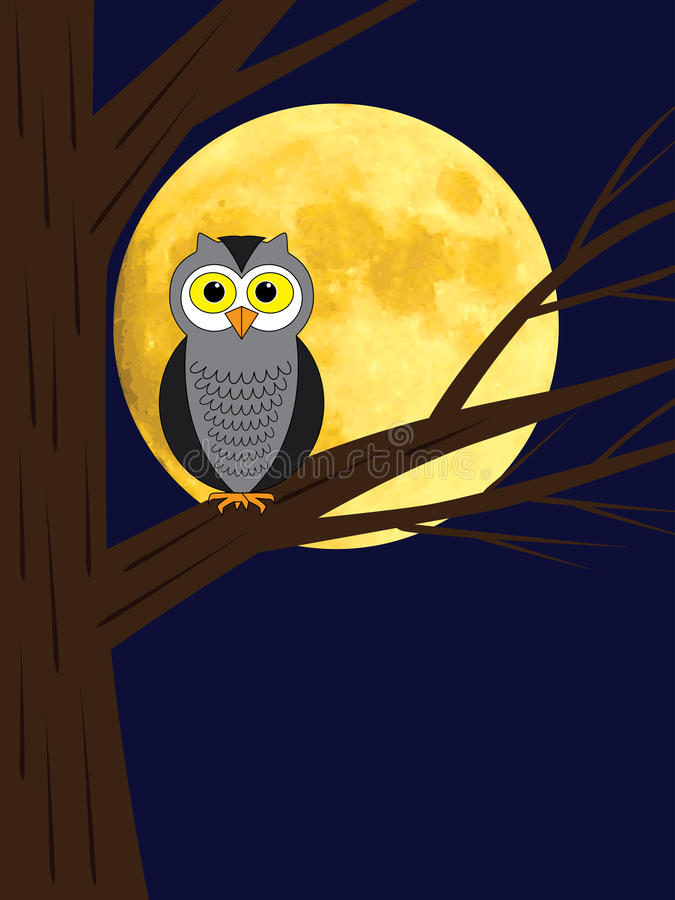 Owl Sitting On A Branch Of Tree Stock Photos