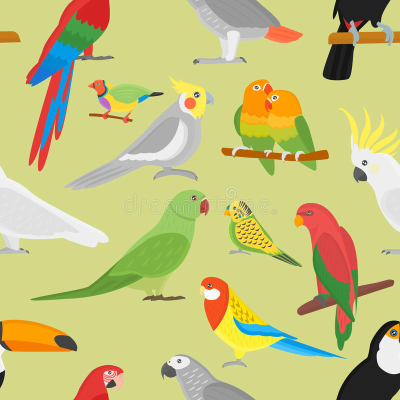 Download Cartoon Parrot Vector Seamless Pattern Stock Vector - Illustration of exotic, south: 83714848