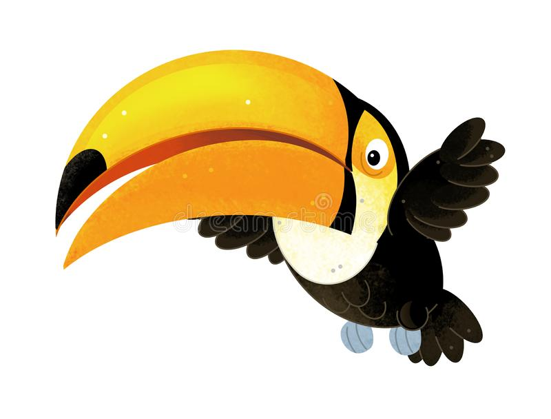 Cartoon scene with toucan on white background vector illustration