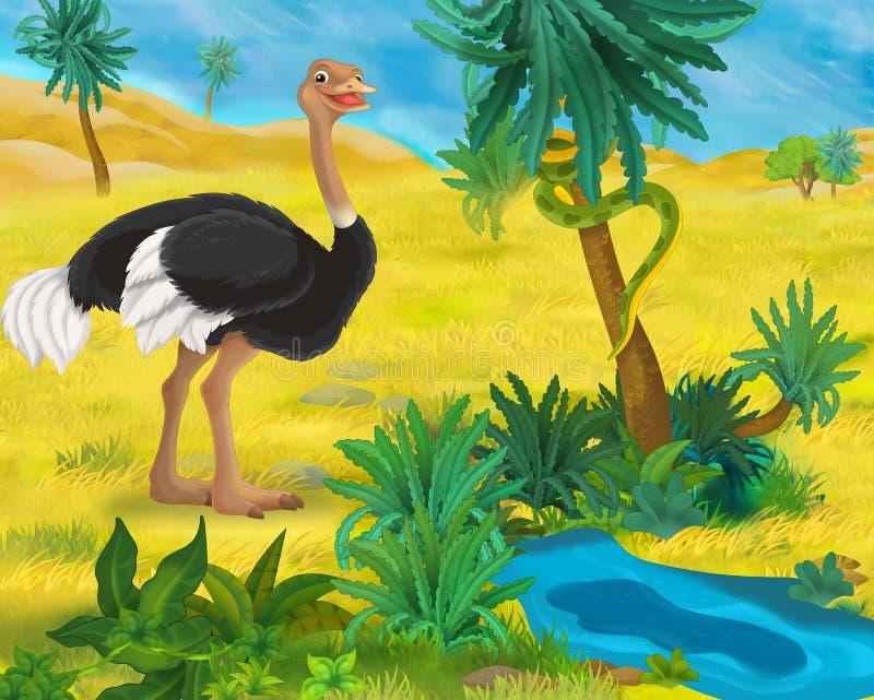 Cartoon scene - wild africa animals - ostrich royalty free illustration