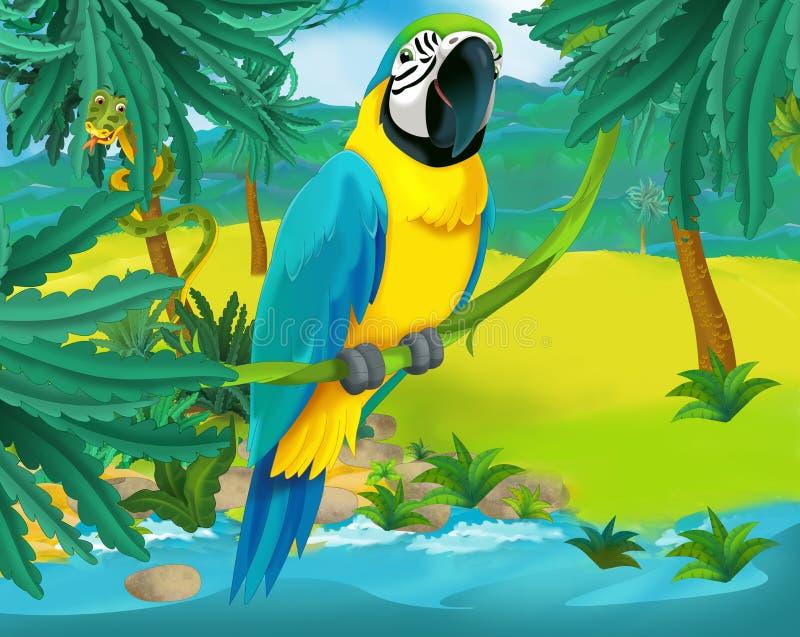 Cartoon scene - wild america animals - parrot stock illustration