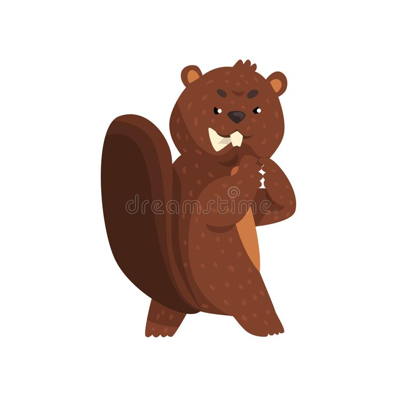 Cartoon scheming beaver with brown fur, little ears, shaped tail and big teeth. Forest rodent with wily and cunning vector illustration