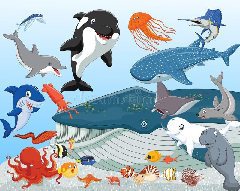 Cartoon sea animals vector illustration