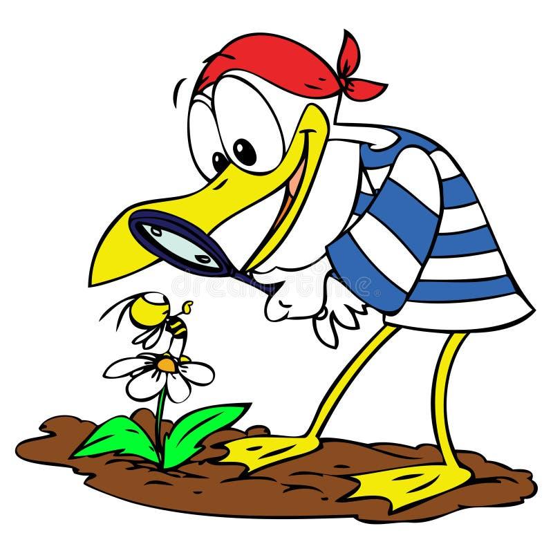 Cartoon Seagull and Bee